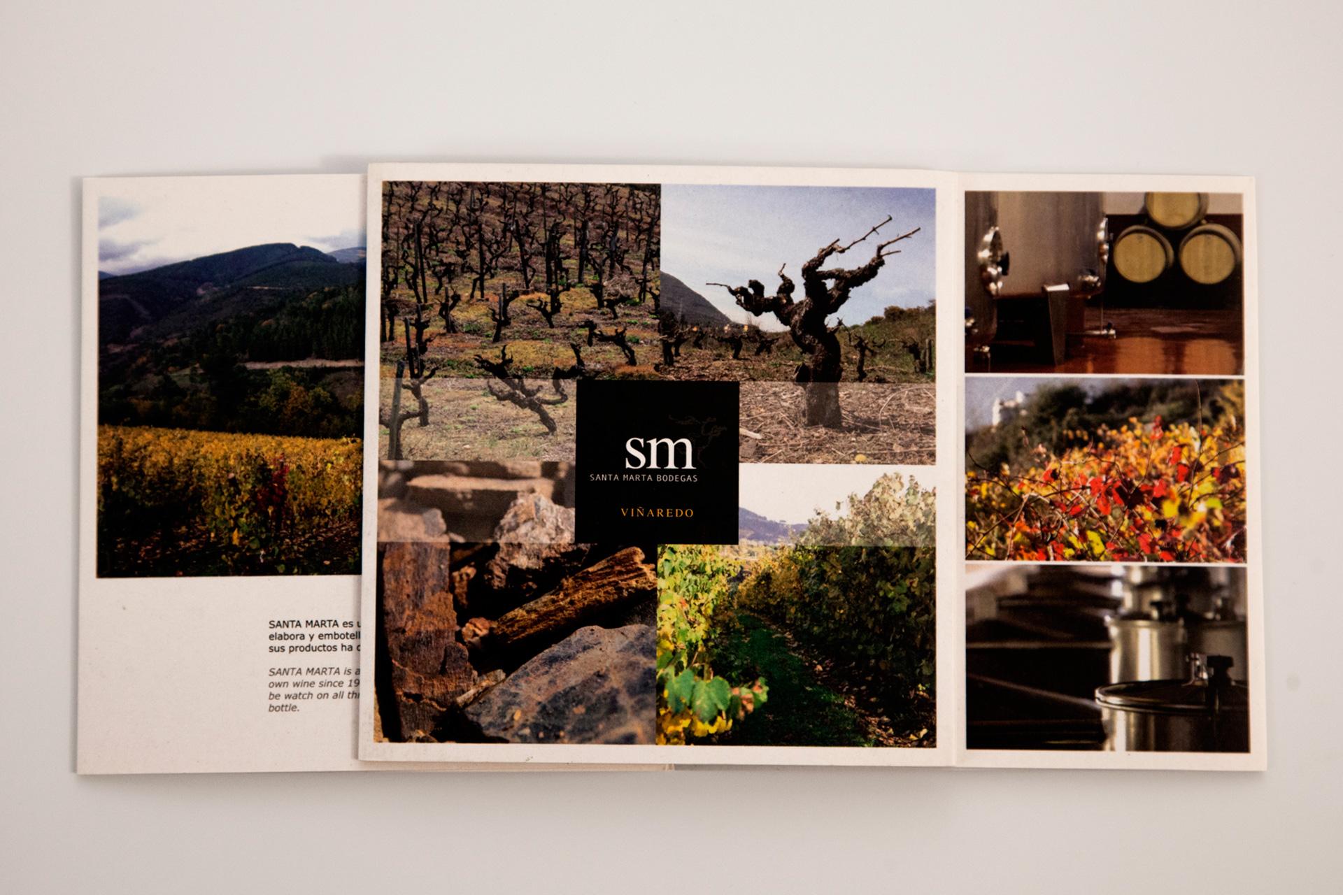 Promoción web, catálogo y logo